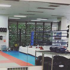 キックボクシングはじめた