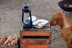 Lanalou Style   Stellenbosch shed envy   http://lanaloustyle.com
