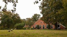 Ter Borg - Borgerweg boerderij. Groningen