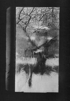 Josef Sudek - First Frost
