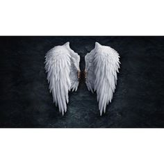 Christmas collection Angel Wings.jpg ❤ liked on Polyvore featuring backgrounds