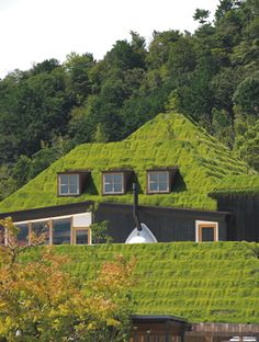 東側の妻面。頂部に植えてあるのは高野槙。「屋根が上がったり下がったりしている様子と窓の納まりはなかなかうまくいったと思う」と藤森氏(写真:生田将人緑茂る丘のような建物、自然との格闘で実現|日経BP社 ケンプラッツ