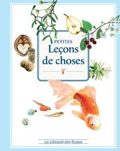 Petites leçons de choses de Jean-Pierre Picandet http://www.amazon.fr/dp/2916788654/ref=cm_sw_r_pi_dp_cd2Vub162XYY7