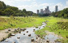 Bishan Park, Singapore | Atelier Dreiseitl