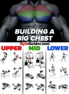 How To Create Monster Muscle Mass For Your Chest In Just 28 Days If you're boring and don't want to experience truly massive gains, feel free to rep through endless standard bench press sets until your bac Gym Workout Chart, Gym Workout Tips, Weight Training Workouts, Bench Press Workout, Workout Routines, Gym Workouts For Men, Mens Fitness Workouts, Back Workouts, Push Day Workout