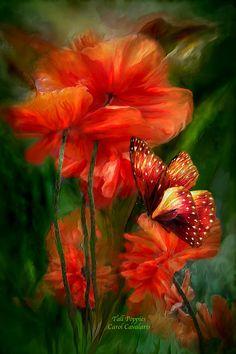 Tall Poppies Mixed Media  - Tall Poppies Fine Art Print by Carol Cavalaris
