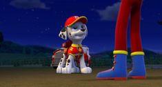 Paw Patrol Characters, Disney Characters, Paw Patrol Pups, Detailed Image, Deviantart, Disney Princess, Friends, Gallery, Children