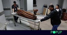 #El macabro negocio de cadáveres en Estados Unidos: cabezas a 500 dólares - elciudadano.com: elciudadano.com El macabro negocio de…