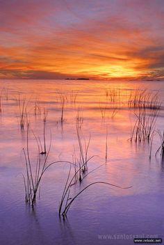 Яркие краски природы | Релаксик