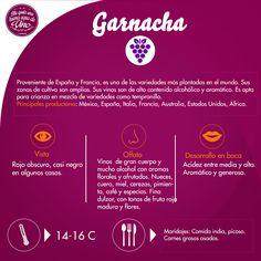 Un buen vino de producción nacional (Mexicana): Garnacha! ¿Quién gusta y a quién se le antoja?