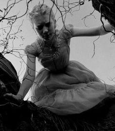 Alice in Wonderland / karen cox.  Cup of Tea