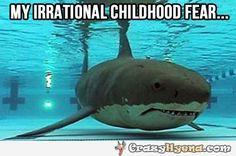 Yup. {Swimming Pool Meme Funny Humor Shark Fear}