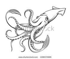 deep-ocean giant squid | tattoo in 2019 | riesenkalmar, ausmalbilder und kalmar