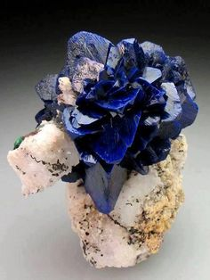 'rose' formed of Azurite blades, on matrix! The Azurite is bright to deep blue and very lustrous, and well crystallised. Azurite roses from Morocco are normally found as floater specimens, and it is rare to see a rose of this quality on matrix. Minerals And Gemstones, Rocks And Minerals, Dame Nature, Rock Collection, Beautiful Rocks, Mineral Stone, Paperclay, Rocks And Gems, Stones And Crystals