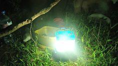 海水を使って発電できるLEDランプ「SALt」