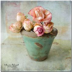 ... just roses ... by Kerstin Frank art, via Flickr. Love this...the colors, elegant, but rustic look.