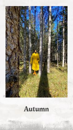 #yellowcoat #fashion #loden #madeinaustria #sustainablefashion #autumn Yellow Coat, Fashion Collage, Sustainable Fashion, Sustainability, Fashion Photography, Country Roads, Autumn, Videos, How To Make