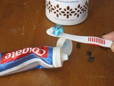 Insert a raisin into a tube of toothpaste. The unsuspecting person who squeezes it will be dismayed by what looks like a bug when the toothpaste comes out onto his toothbrush.