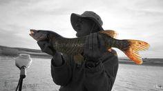 Doğusan Yılmaz AVŞAR-DYA - Pike Hunter - Fishing - Turna Avı - Kara Avı - Av- Avcı-Av Videoları-Balık Avı-DYA