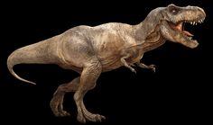 T Rex silhouette