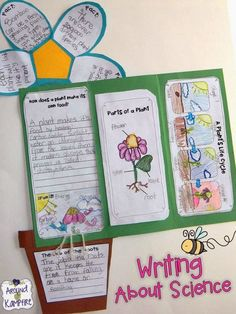 Lots Of Fun And Creative Ideas For Getting Kids To Write About Science While Teaching The Life Cycle Of Plants. Additionally Includes Free Printable Anchor Charts For Photosynthesis And Parts Of A Plant. Primary Science, Kindergarten Science, Elementary Science, Science Classroom, Science Education, Teaching Science, Science Activities, Science Ideas, Writing Activities