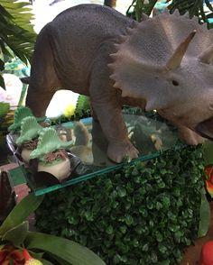 A imagem pode conter: 1 pessoa, planta e comida Festa Jurassic Park, Elephant, 1, Animals, World Of Dinos, 4 Years, Kids Part, Natural Person, Ideas