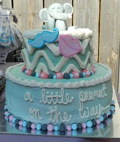 The Nifty Thrifty Family: Gender Reveal Party!