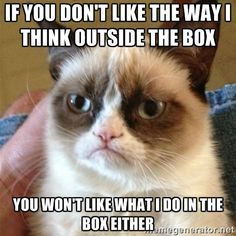 Grumpy Cat - if you don't like the way I think outside the box you won't like what I do in the box either