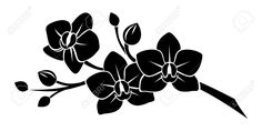 Black Silhouette Of Orchid Flowers Royalty Free Cliparts, Vectors, And Stock Illustration. Image 21781860.