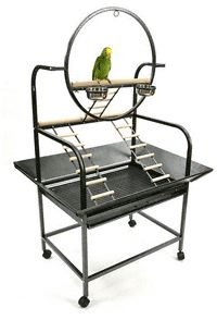 The O Parrot Play Stand