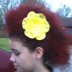 My daughters crazy hair day!