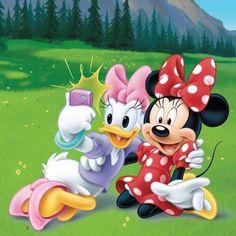 Disney's Minnie & Daisy Walt Disney, Disney Mickey, Disney Art, Pato Donald Y Daisy, Daisy Duck, Donald Duck, Mickey Mouse Pictures, Mickey Mouse And Friends, Retro Disney