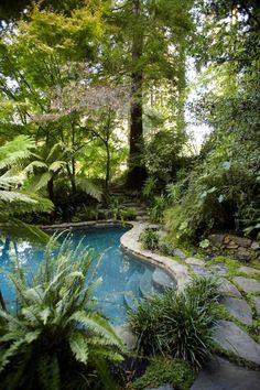 beautiful pool and landscaping