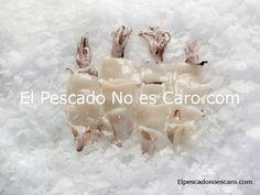 Calamar limpio troceado del Atlántico Sur.    Se sirve en bolsas de 1 Kg y cajas de 8 Kg.  Producto limpio, troceado y listo para cocinar.    Producto salvaje, ultracongelado en el momento de captura.    Este molusco austral procedente de las frías aguas del Atlántico meridional en la Patagonia, está considerado el mejor del mundo. Además, puede prepararse de muy diversas formas y combinarse con todo tipo de guarniciones.