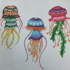 """""""Jellyfishes. Graceful but Deadly.  #Finish #LostOcean #johannabasford #adultcoloringbook #MyCreativeEscape #steadtler #luna #watercolorpencils…"""""""