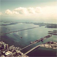 Miami Miami Miami