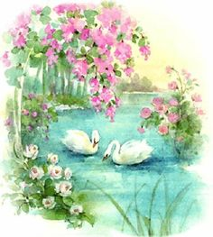 Islamic Art Pattern, Pattern Art, Beautiful Birds, Beautiful Pictures, Swan Animal, Floral Logo, Cute Clipart, Garden Painting, Peaceful Places