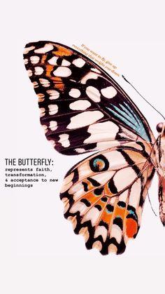 Butterfly Quotes, Butterfly Art, Butterflies, Aesthetic Iphone Wallpaper, Aesthetic Wallpapers, Images Murales, Arte Sketchbook, Butterfly Wallpaper, Art Plastique
