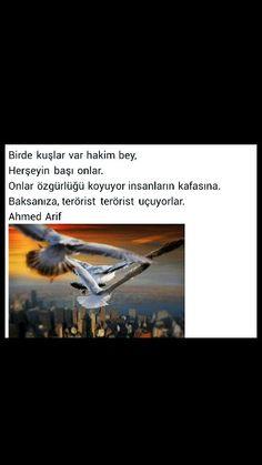 Bir de kuşlar var hakim bey Herşeyin başı onlar Onlar özgürlüğü koyuyor insanların kafasına Baksanıza terörist terörist uçuyorlar Ahmed Arif