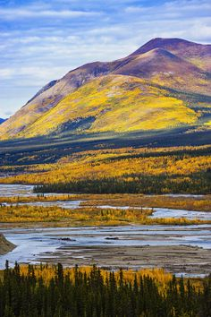 Take the Alaska Highway to Kluane Lake. This area is known for its fishing with its abundance of whitefish and lake trout.