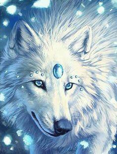 Beautiful Wolf!!