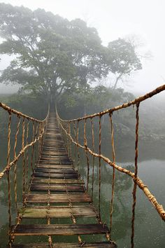 Rope Bridge - Sapa Valley, Vietnam