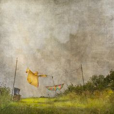 Jamie Heiden PHOTOGRAPHY