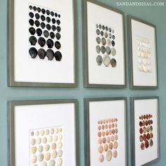 Framed shell art, shells organized by color & size.