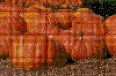 X-Stitch : pumpkins
