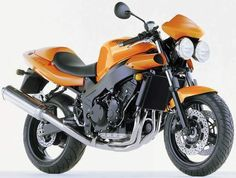 Speed Triple 955i, 2001-2002