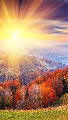 zonlicht heeft een sterke lichtintensiteit.