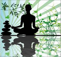 http://pure-yoga-dvd.com/   -  Zen Yoga is a holistic system that unites all aspects of the human self by meeting the fundamental needs of physical health, mental clarity and spiritual peace. Through the integration of body, mind and spirit Zen Yoga creates flexibility, health, vitality and peace of mind.
