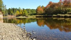 https://flic.kr/p/M3nEZ2 | Down By The River | Still swimming weather here on the east coast of Canada. It was nearly 30c out yesterday and it's low twenties out right now here in Truro. Get out there while you can.  Explored on 10/9/16  Taken at Salmon River in Truro, Nova Scotia, Canada.