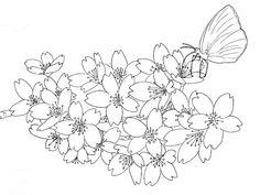 桜の花とモンキイチョウの下絵ーさくらの塗り絵